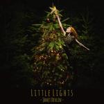 littlelights.jpg